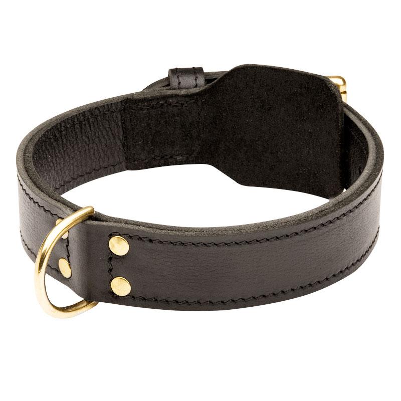 96022840b30e Collar cuero adiestrar perros Dogo de burdeo «Doble capa» - C33NH