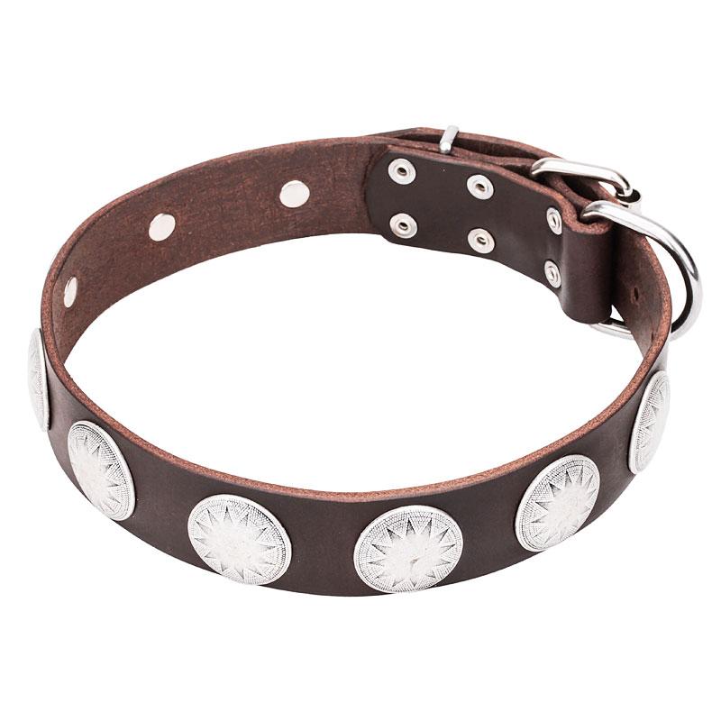 Collar de cuero para perro de moda los mayas c107 - Collares de cuero ...