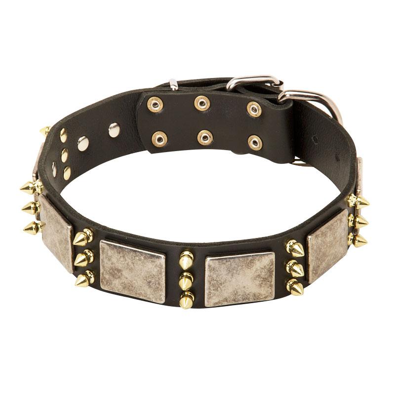 Collar para perro pitbull de cuero con pinchos alta costura c87 - Collares de cuero ...